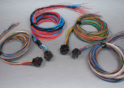 KV Series ABCD Flying Harness